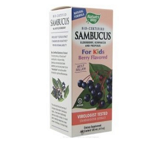 Nature's Way Sambucus for <br /> Kids berry flavored